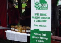"""Seminarium wyjazdowe """"Miody kupujesz pszczoły ratujesz – plenerowa impreza szkoleniowo-promocyjna i edukacyjna"""""""