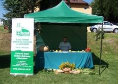 Dożynki w gminie Mszana