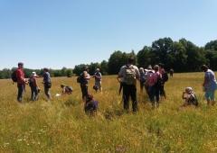 Szkolenie ekspertów przyrodniczych w Dolinie Bugu